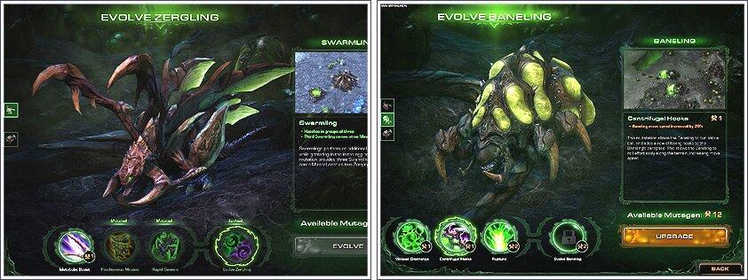 Evolution des unités zerg durant la campagne